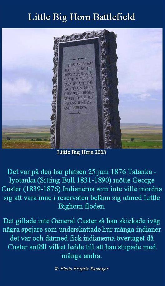 littlebighorn1
