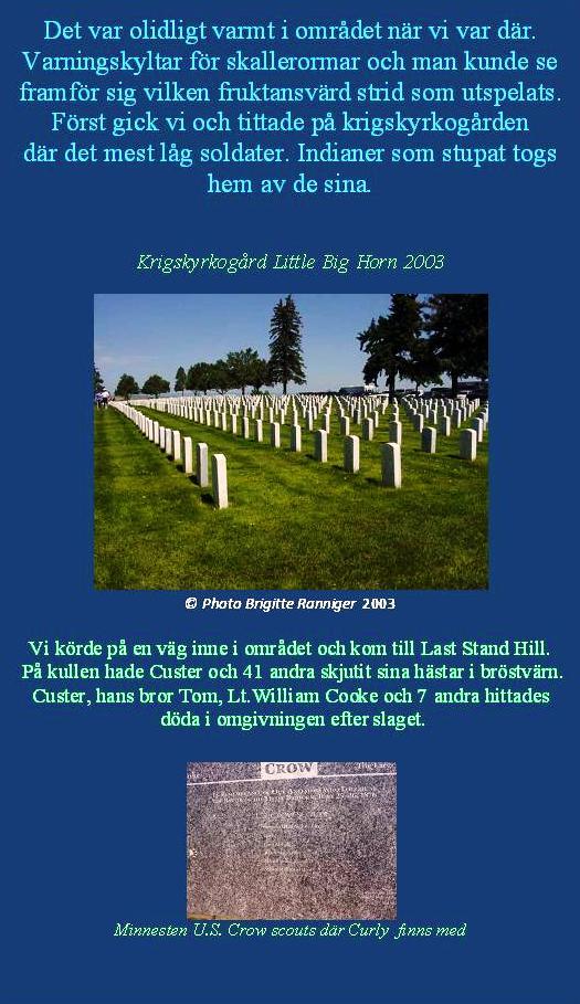 littlebighorn5