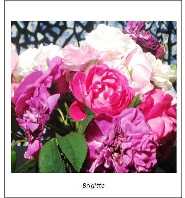 blommor9