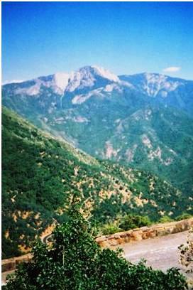 sequoia2001