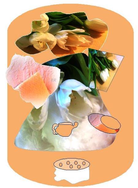 aprikos05