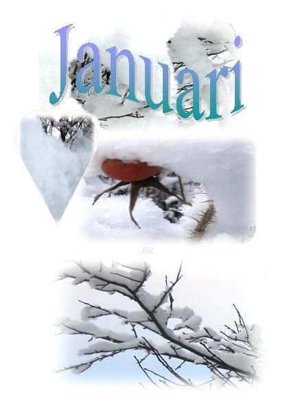 januari10
